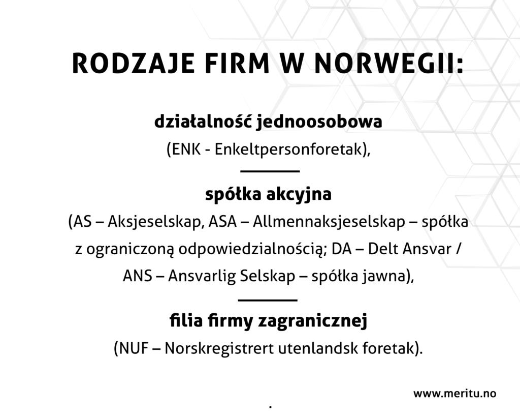 Jakie w Norwegii występują typy działalności gospodarczej?